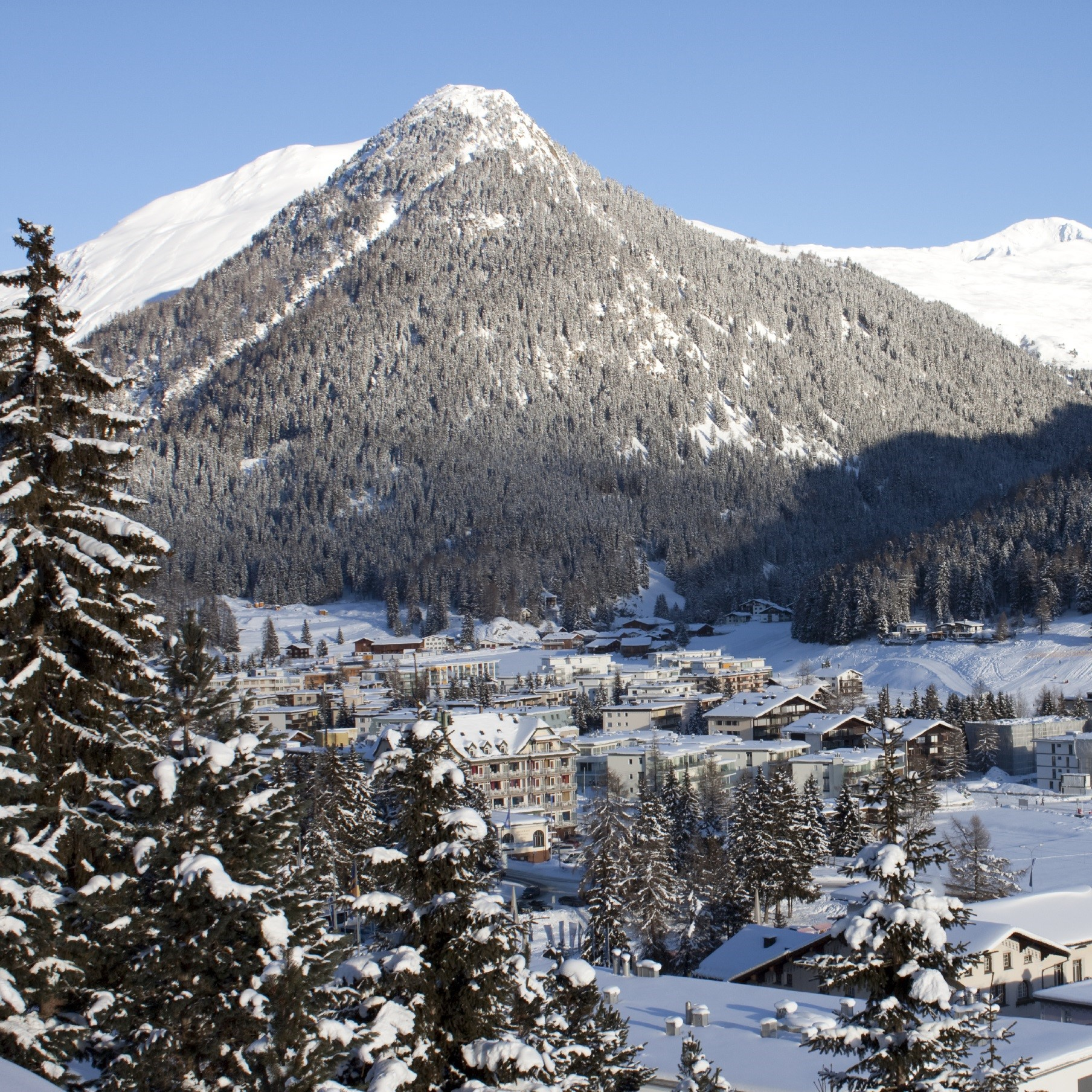 Global Views from the World Economic Forum at Davos, Switzerland